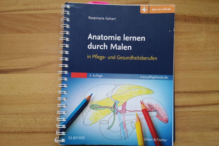 Anatomie lernen durch Malen von Elsevier